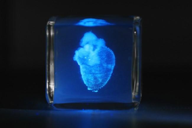 Heart, 3D printing